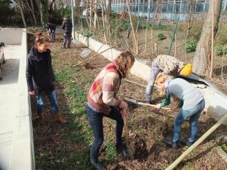 Planting for next generations, Berlin, Mundraub planting action (2017)